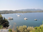 Tzasteni Pilion - Griekenland -foto 2 - Foto van De Griekse Gids