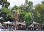 Volos Magnisia - Griekenland - foto 15 - Foto van De Griekse Gids