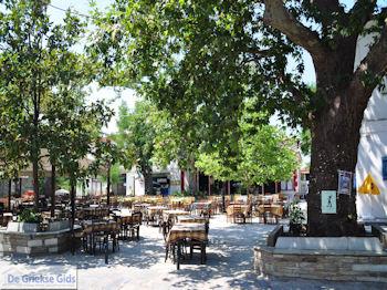 Argalasti Pilion - Griekenland - foto 2 - Foto van De Griekse Gids