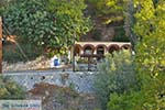 Zoodochou Pigis klooster Poros (Saronische eilanden) nr17 - Foto van De Griekse Gids