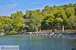 Neorio op Poros (Saronische eilanden) nr6 - Foto van De Griekse Gids