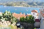Poros | Saronische eilanden | De Griekse Gids Foto 147 - Foto van De Griekse Gids