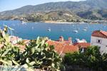 Poros | Saronische eilanden | De Griekse Gids Foto 148 - Foto van De Griekse Gids