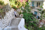 Poros | Saronische eilanden | De Griekse Gids Foto 182 - Foto van De Griekse Gids
