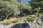 Poros | Saronische eilanden | GriechenlandWeb.de Foto 190 - Foto GriechenlandWeb.de
