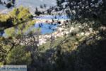 Poros | Saronische eilanden | De Griekse Gids Foto 193 - Foto van De Griekse Gids
