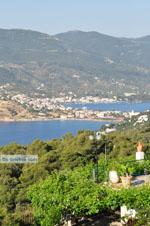 Poros | Saronische eilanden | De Griekse Gids Foto 196 - Foto van De Griekse Gids