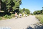 Poros | Saronische eilanden | De Griekse Gids Foto 197 - Foto van De Griekse Gids