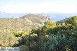 Poros | Saronische eilanden | De Griekse Gids Foto 203 - Foto van De Griekse Gids