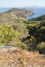 Poros | Saronische eilanden | De Griekse Gids Foto 204 - Foto van De Griekse Gids