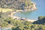 Vagionia Poros | Saronische eilanden | De Griekse Gids Foto 206 - Foto van De Griekse Gids