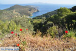 Poros | Saronische eilanden | De Griekse Gids Foto 208 - Foto van De Griekse Gids