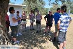 Poros | Saronische eilanden | De Griekse Gids Foto 221 - Foto van De Griekse Gids