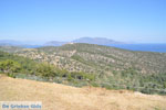 Poseidon heiligdom Poros | Saronische eilanden | GriechenlandWeb.de Foto 230 - Foto GriechenlandWeb.de