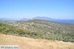 GriechenlandWeb Poseidon heiligdom Poros | Saronische eilanden | GriechenlandWeb.de Foto 230 - Foto GriechenlandWeb.de