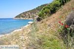 Poros | Saronische eilanden | De Griekse Gids Foto 251 - Foto van De Griekse Gids