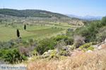 Poros | Saronische eilanden | De Griekse Gids Foto 261 - Foto van De Griekse Gids