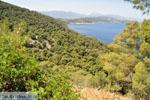 Poros | Saronische eilanden | De Griekse Gids Foto 264 - Foto van De Griekse Gids