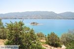 Poros | Saronische eilanden | De Griekse Gids Foto 269 - Foto van De Griekse Gids