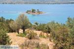 Eilandje Daskalio Poros | Saronische eilanden | De Griekse Gids Foto 275 - Foto van De Griekse Gids