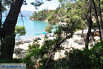 Limanaki Agapis Poros | Saronische eilanden | De Griekse Gids Foto 284 - Foto van De Griekse Gids