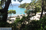 Limanaki Agapis Poros | Saronische eilanden | De Griekse Gids Foto 291 - Foto van De Griekse Gids