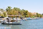 Neorio Poros | Saronische eilanden | GriechenlandWeb.de Foto 298 - Foto GriechenlandWeb.de