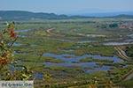 Ammoudia, Acheron delta - Departement Preveza -  Foto 9 - Foto van De Griekse Gids