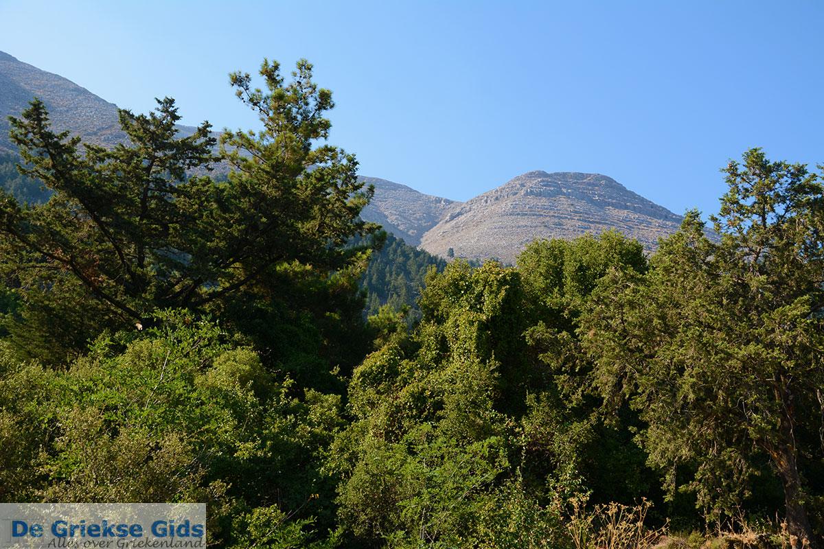 foto Embonas Rhodos - Rhodos Dodecanese - Foto 12