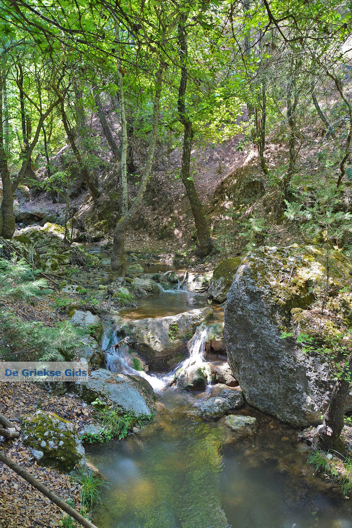 foto Vlindervallei Rhodos - Rhodos Dodecanese - Foto 1844