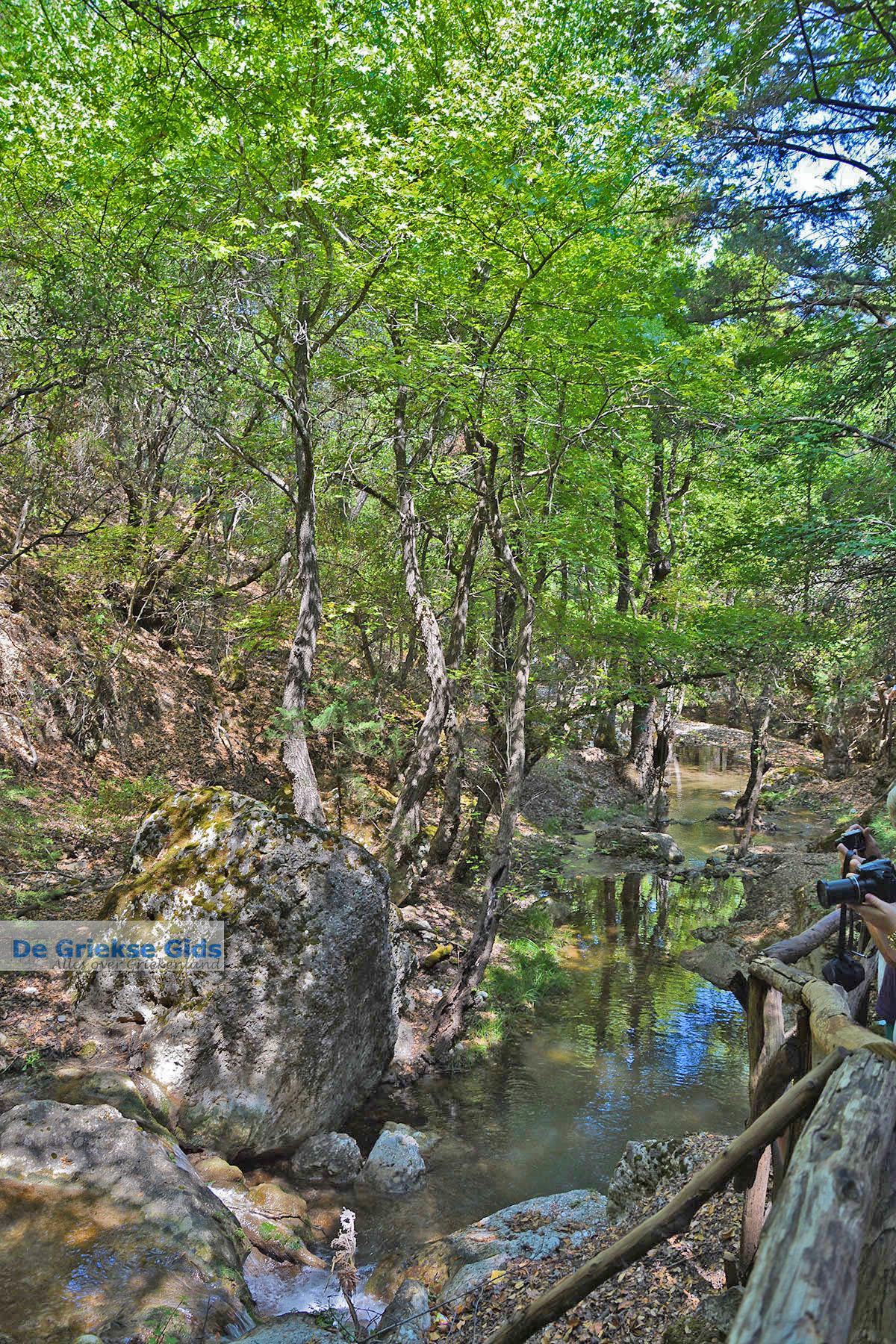foto Vlindervallei Rhodos - Rhodos Dodecanese - Foto 1848