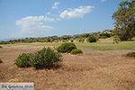 Afandou Rhodos - Rhodos Dodecanese - Foto 29 - Foto van De Griekse Gids