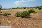 Afandou Rhodos - Rhodos Dodecanese - Foto 30 - Foto van De Griekse Gids