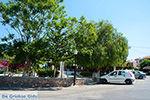 Apolakkia Rhodos - Rhodos Dodecanese - Foto 77 - Foto van De Griekse Gids