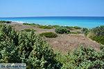 Apolakkia Rhodos - Rhodos Dodecanese - Foto 88 - Foto van De Griekse Gids