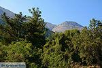Embonas Rhodos - Rhodos Dodecanese - Foto 12 - Foto van De Griekse Gids