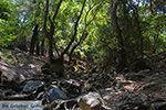 Epta Piges - Zeven bronnen Rhodos - Rhodos Dodecanese - Foto 164 - Foto van De Griekse Gids