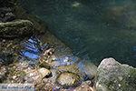 Epta Piges - Zeven bronnen Rhodos - Rhodos Dodecanese - Foto 171 - Foto van De Griekse Gids