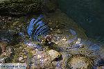 Epta Piges - Zeven bronnen Rhodos - Rhodos Dodecanese - Foto 172