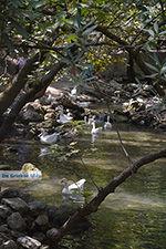Epta Piges - Zeven bronnen Rhodos - Rhodos Dodecanese - Foto 173 - Foto van De Griekse Gids