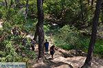 Epta Piges - Zeven bronnen Rhodos - Rhodos Dodecanese - Foto 183 - Foto van De Griekse Gids