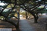 Filerimos Rhodos - Rhodos Dodecanese - Foto 303 - Foto van De Griekse Gids