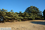 Filerimos Rhodos - Rhodos Dodecanese - Foto 306