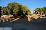 Filerimos Rhodos - Rhodos Dodecanese - Foto 366 - Foto van De Griekse Gids