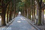 Filerimos Rhodos - Rhodos Dodecanese - Foto 373 - Foto van De Griekse Gids