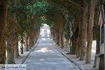 Filerimos Rhodos - Rhodos Dodecanese - Foto 374 - Foto van De Griekse Gids