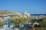 Kolymbia Rhodos - Rhodos Dodecanese - Foto 698 - Foto van De Griekse Gids