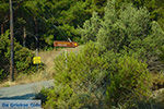 Kritinia Rhodos - Rhodos Dodecanese - Foto 729 - Foto van De Griekse Gids