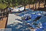 Lindos Rhodos - Rhodos Dodecanese - Foto 1032 - Foto van De Griekse Gids