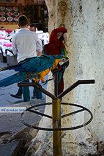 Rhodos stad Rhodos - Rhodos Dodecanese - Foto 1375 - Foto van De Griekse Gids